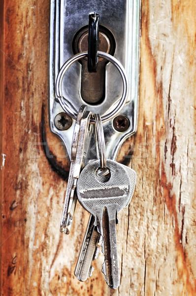 Tuşları kilitlemek ayarlamak eski ahşap kapı Stok fotoğraf © elenaphoto