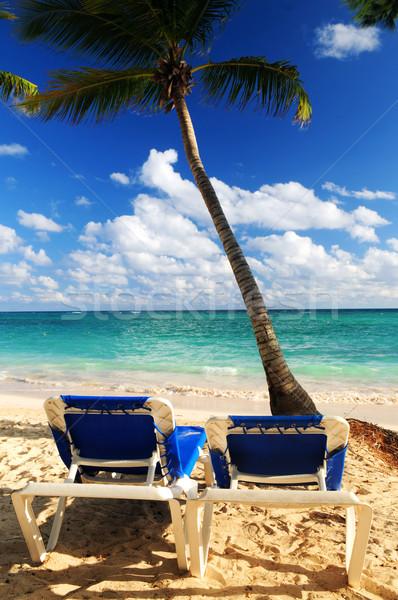 Stock fotó: Homokos · tengerpart · trópusi · üdülőhely · pálmafák · kettő · tengerpart