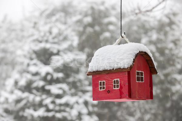 Bird house with snow in winter Stock photo © elenaphoto