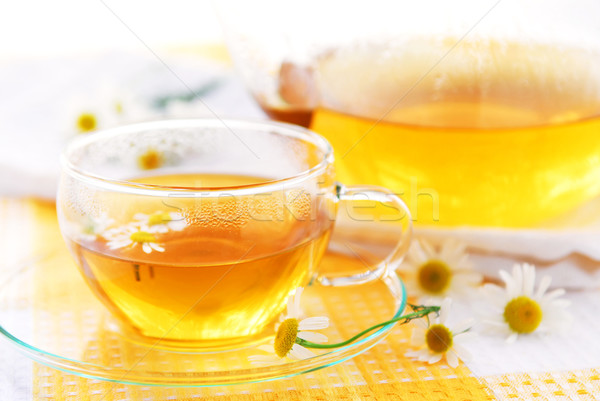 Camomile tea Stock photo © elenaphoto