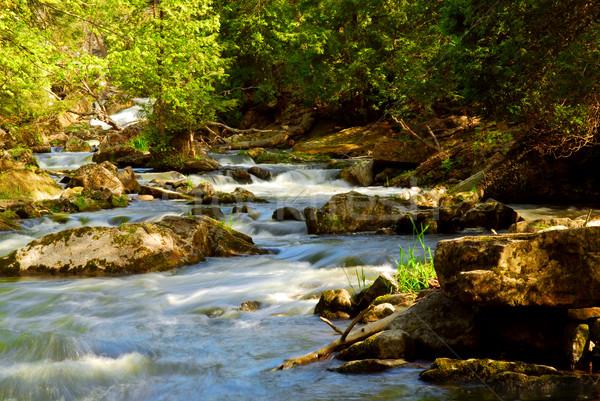 River rapids Stock photo © elenaphoto