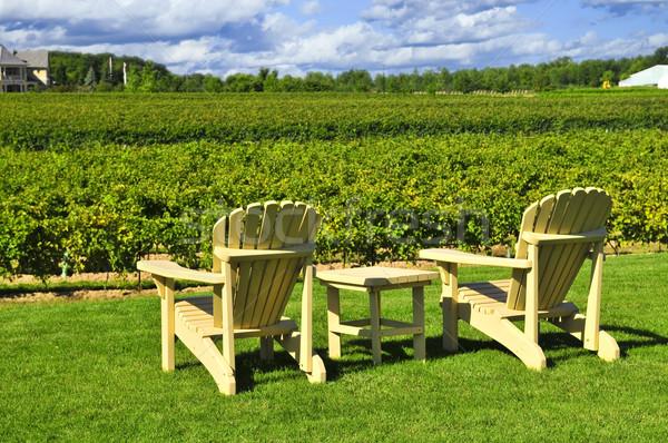 Stoelen wijngaard tabel wijnmakerij hemel gras Stockfoto © elenaphoto