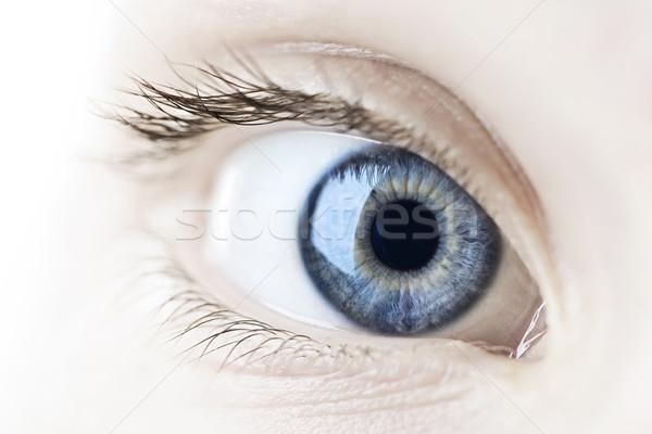 Eye closeup Stock photo © elenaphoto