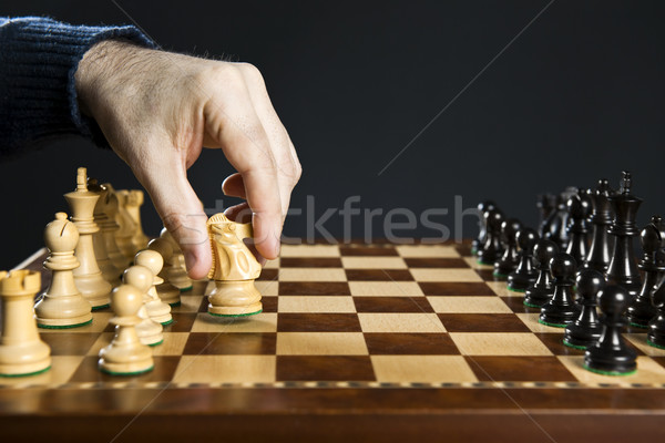 Hand moving knight on chess board Stock photo © elenaphoto