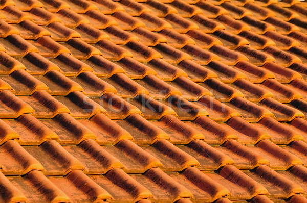 Roof tiles Stock photo © elenaphoto
