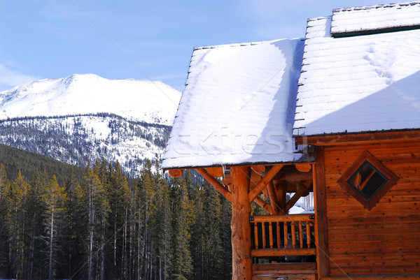 Log mountain cabin Stock photo © elenaphoto