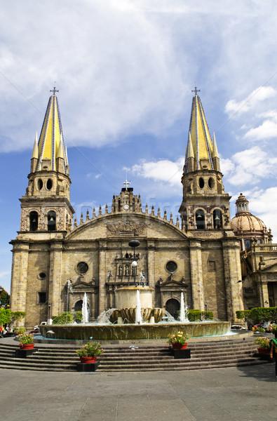 Catedral México histórico centro agua iglesia Foto stock © elenaphoto