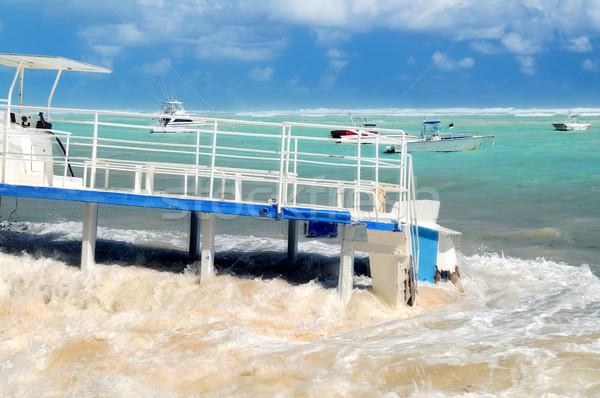 Gemi enkazı sahil caribbean deniz doğa okyanus Stok fotoğraf © elenaphoto