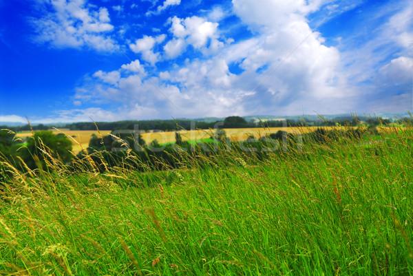 Stockfoto: Zomer · landschap · bewolkt · blauwe · hemel · hemel
