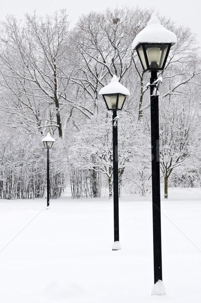 Winter park Stock photo © elenaphoto