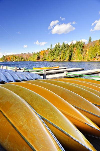 Kenu bérlet ősz tó bérlés ősz Stock fotó © elenaphoto