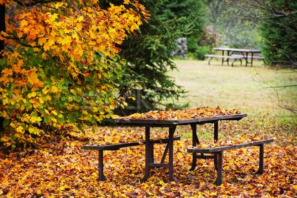 Picknicktafel gedekt kleurrijk vallen bladeren Stockfoto © elenaphoto