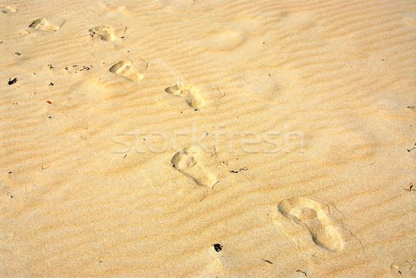 Homok lábnyomok citromsárga felület tengerpart háttér Stock fotó © elenaphoto