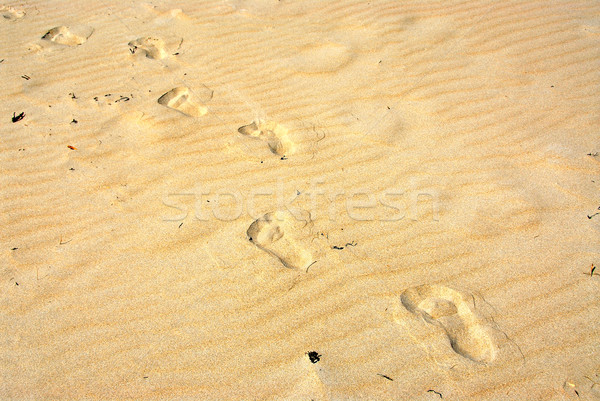 Sable empreintes jaune surface plage fond Photo stock © elenaphoto