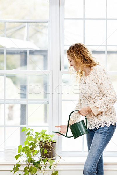 Smiling woman watering plant at home Stock photo © elenaphoto