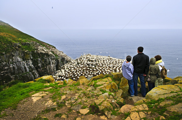 Family visiting Cape St. Mary's Ecological Bird Sanctuary in Newfoundland Stock photo © elenaphoto