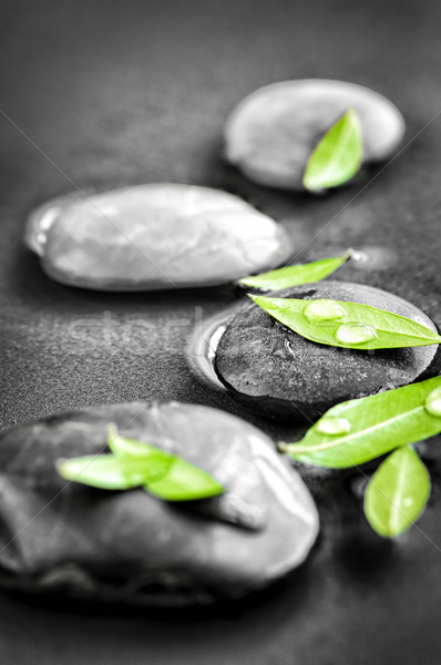 Stones with green leaves and water drops Stock photo © elenaphoto