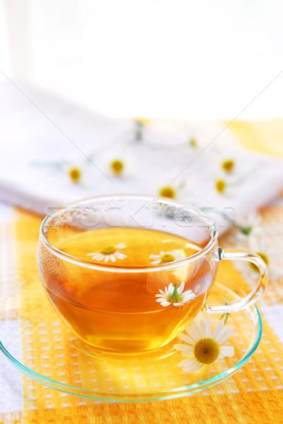 Manzanilla té taza de té flores médicos Foto stock © elenaphoto