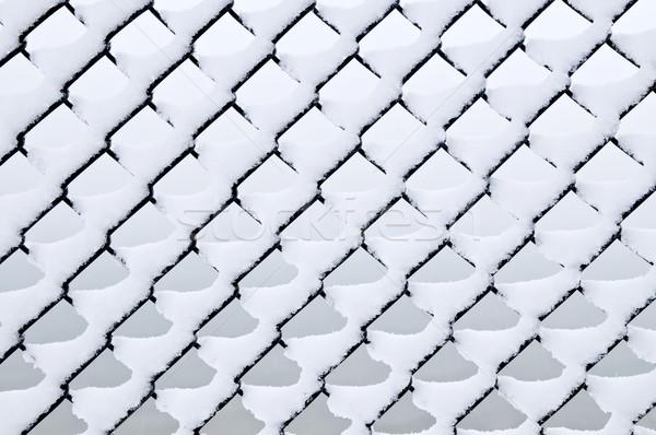 Zdjęcia stock: Link · ogrodzenia · śniegu · wzór · łańcucha · świeże