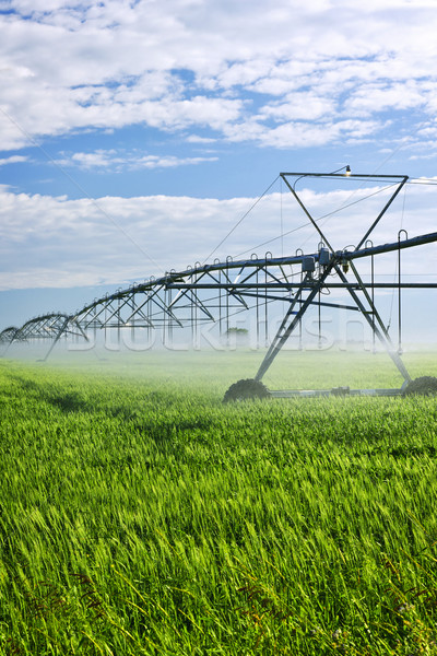 Nawadnianie wyposażenie gospodarstwa dziedzinie przemysłowych saskatchewan Zdjęcia stock © elenaphoto