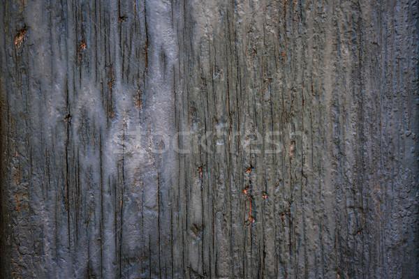 Edad agrietado madera capeado rústico Foto stock © elenaphoto