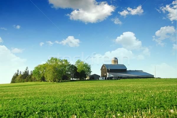 Stok fotoğraf: Ahır · yeşil · alanları · gökyüzü · ağaç · gıda