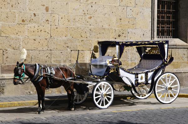Horse drawn carriage in Guadalajara, Jalisco, Mexico Stock photo © elenaphoto