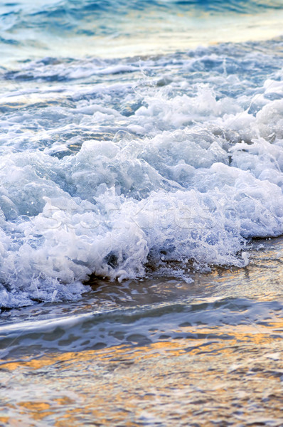 Waves breaking on tropical shore Stock photo © elenaphoto