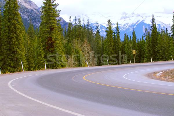 Road turn Stock photo © elenaphoto