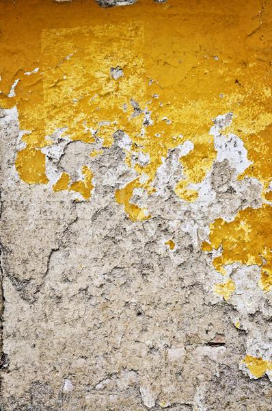 Grunge ściany starych wyblakły malowany tekstury Zdjęcia stock © elenaphoto