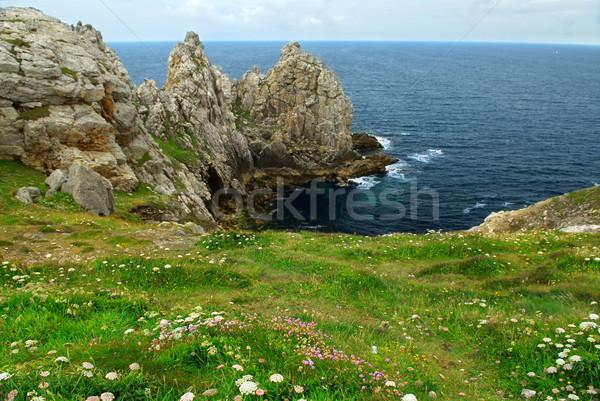 海岸 風光明媚な 表示 フランス フォーカス フォアグラウンド ストックフォト © elenaphoto