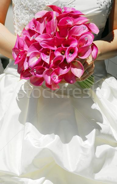 Bride Stock photo © elenaphoto