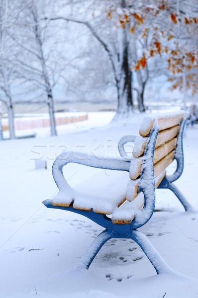 Invierno banco cubierto nieve vacío parque Foto stock © elenaphoto