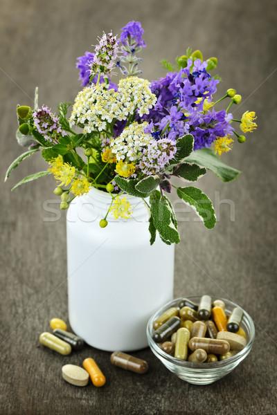Herbal medicine and plants Stock photo © elenaphoto