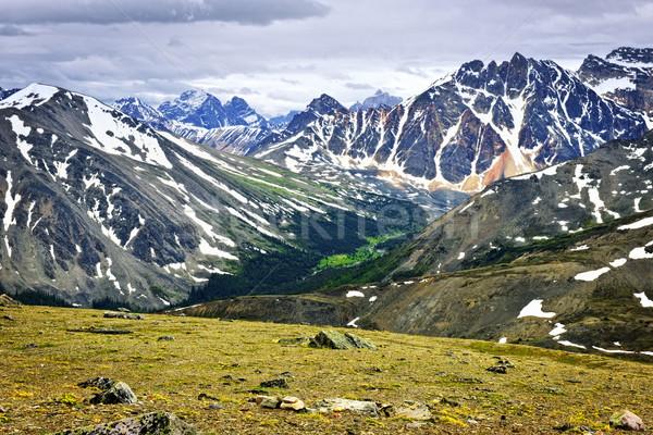 Rocky Mountains in Jasper National Park, Canada Stock photo © elenaphoto