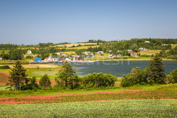 Landscape with bay in Prince Edward Island Canada Stock photo © elenaphoto