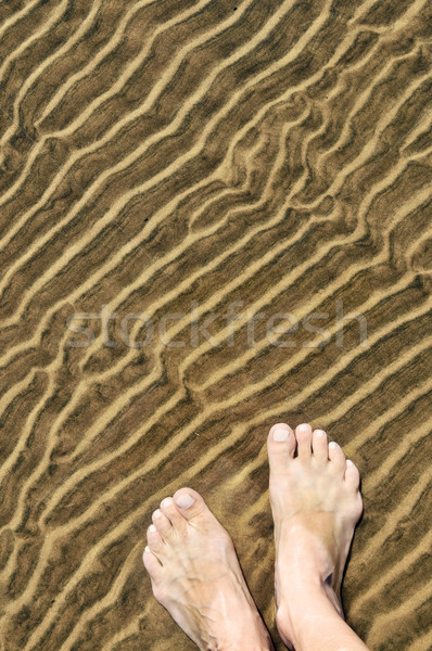 Feet in shallow water Stock photo © elenaphoto
