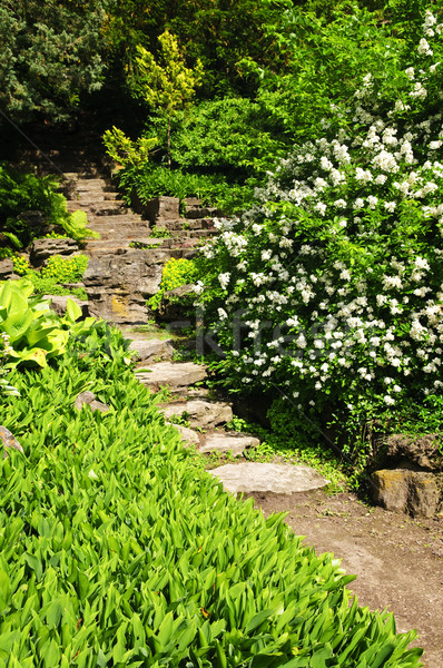 Stock photo: Natural stone garden steps