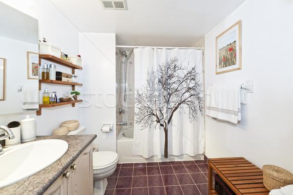 Bathroom interior Stock photo © elenaphoto