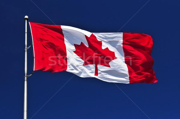 Canadian flag Stock photo © elenaphoto
