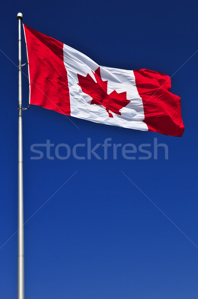 Drapeau canadien pavillon Canada vent ciel bleu Photo stock © elenaphoto