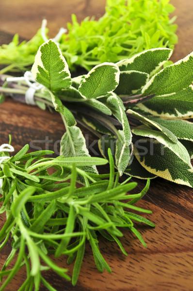 Bunches of fresh herbs Stock photo © elenaphoto