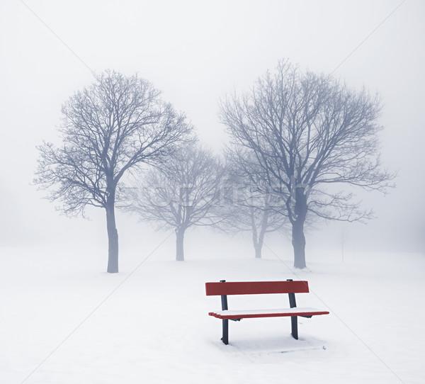 Zimą drzew ławce przeciwmgielne mglisty Zdjęcia stock © elenaphoto