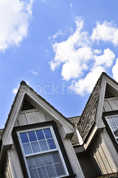 House detail Stock photo © elenaphoto
