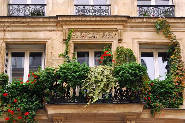 Pencereler sarmaşık kapalı Bina Paris Fransa Stok fotoğraf © elenaphoto