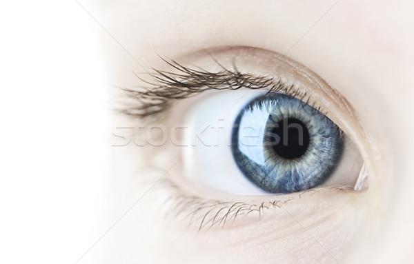 Oog vrouwelijke Blauw naar camera Stockfoto © elenaphoto
