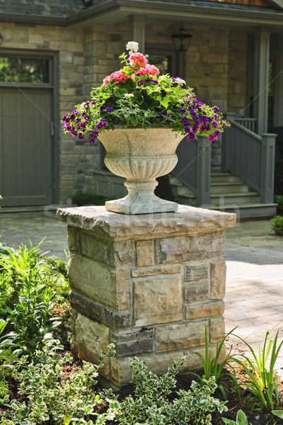 Stone planter in front of house Stock photo © elenaphoto