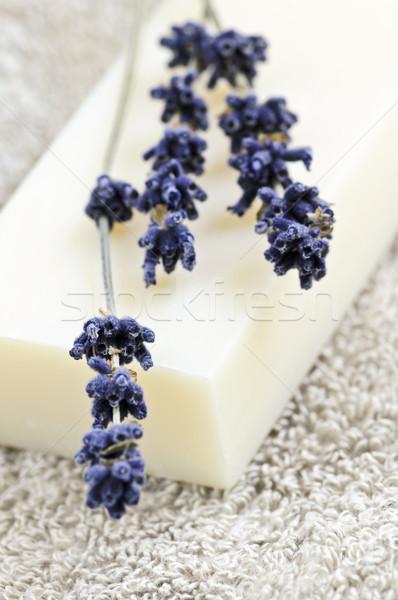 Lavendel zeep bar natuurlijke aromatherapie gedroogd Stockfoto © elenaphoto
