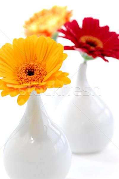 Interior design vases Stock photo © elenaphoto