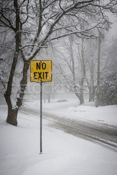 Stock photo: Winter road during snowfall